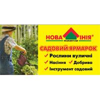 САДОВАЯ ЯРМАРКА. Цветы и растения в саду и огороде
