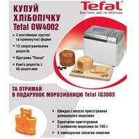 Подарок покупателям хлебопечки Tefal – мороженица