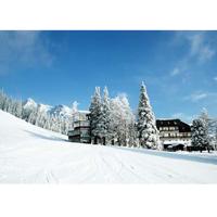 На лыжи в Словакию, Новогодний тур за 190 евро