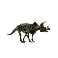 Большая модель скелета Трицератопса со скидкой