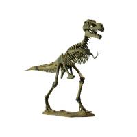 Большая модель скелета Тиранозавра со скидкой